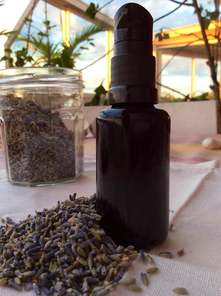 lavandula vera essential oil