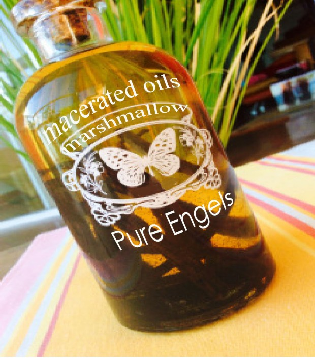 macerated oils pure engels marshmallow