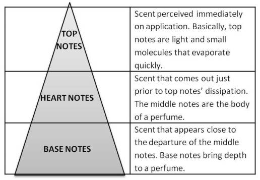 olfactive fragrance notes triangle