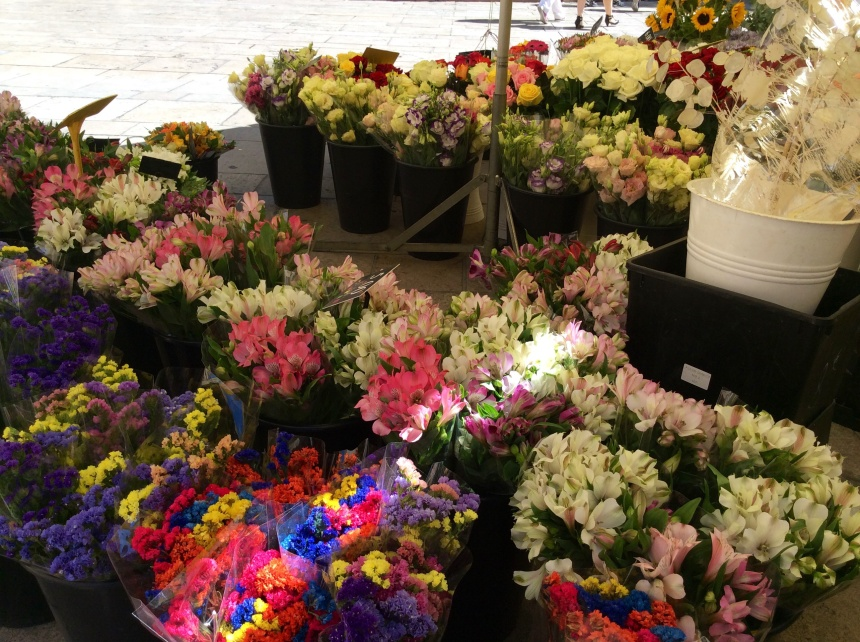 flower in the farmer market in Aix en Provence