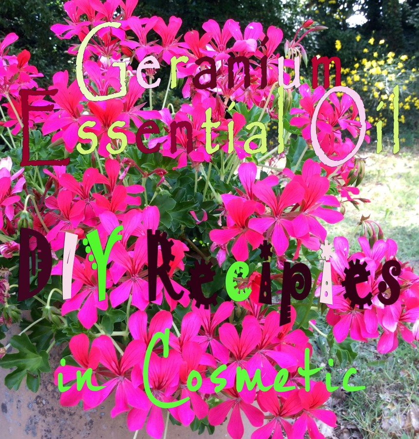 geranium diy