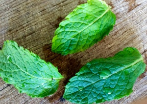 peppermint diy for beauty