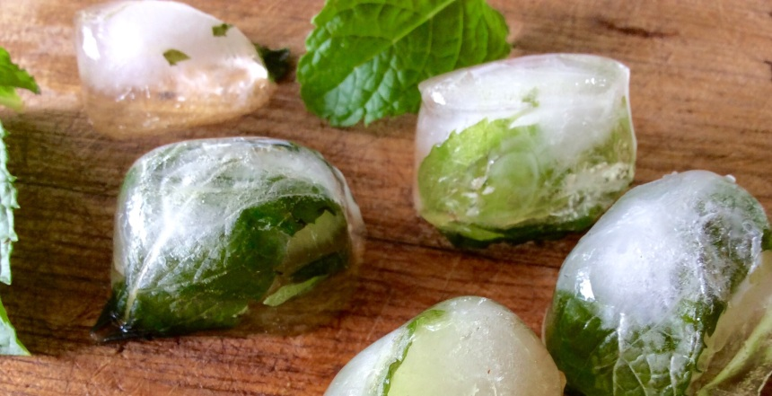 peppermint hydrosol ice cubes