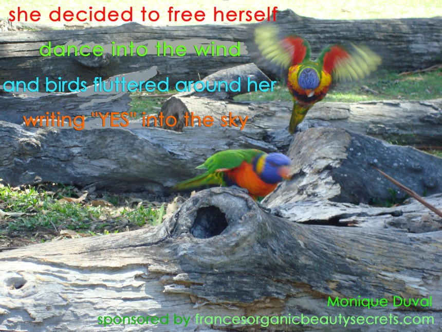 birds quote for freedom