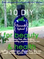 chamomile hydrosol 10 DIY