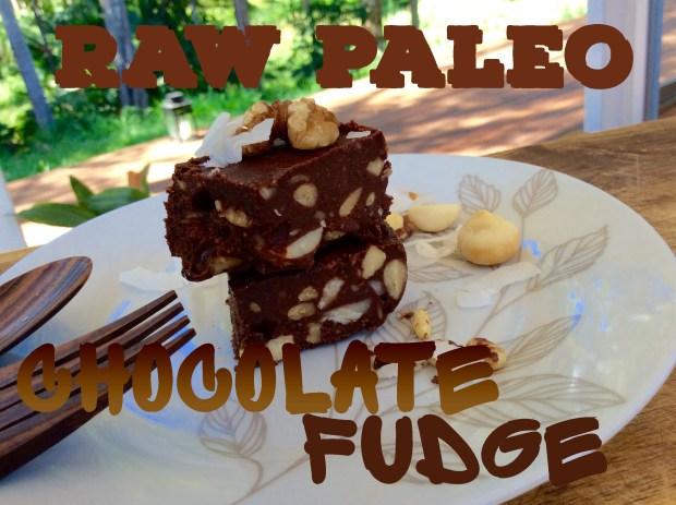 raw coco chocolate fudge