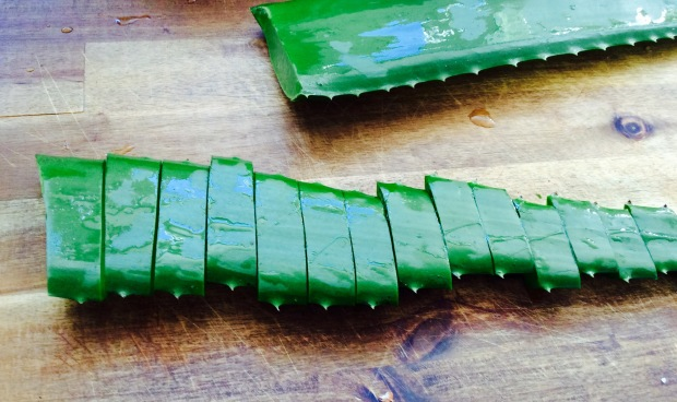 preparing aloe for gel