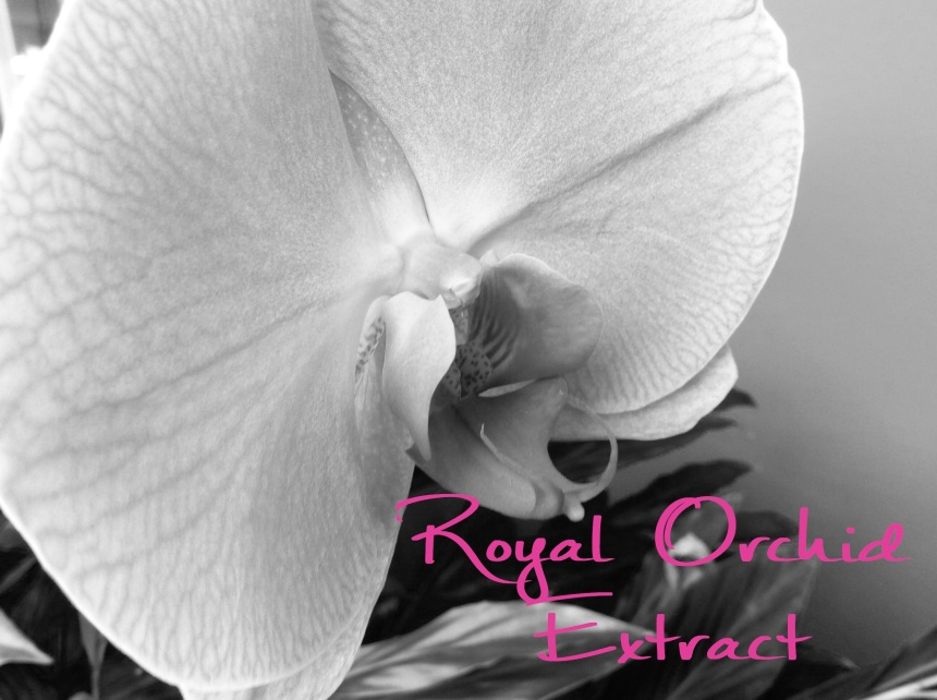 royal orchid extract
