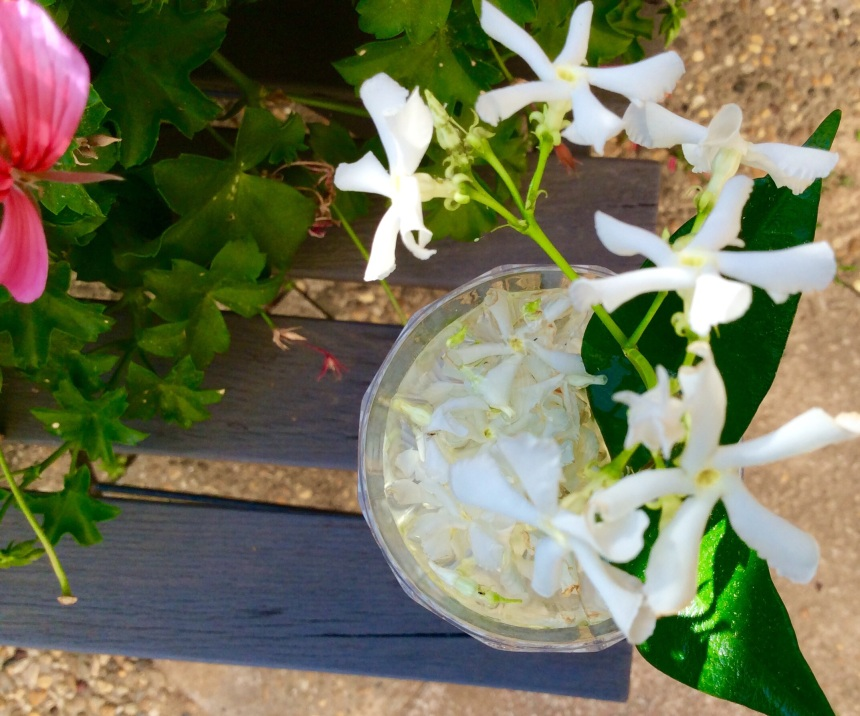 Aphrodisiac Jasmine drink