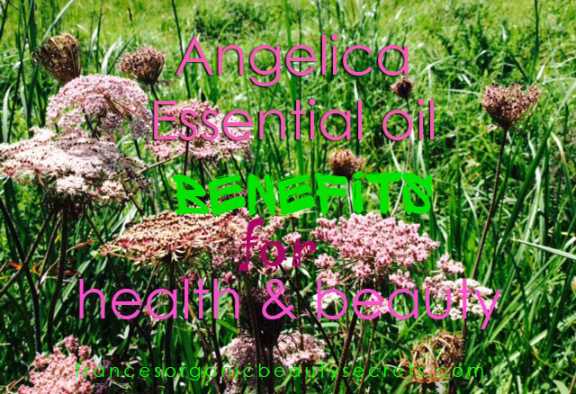 angelica archangelica essential oil