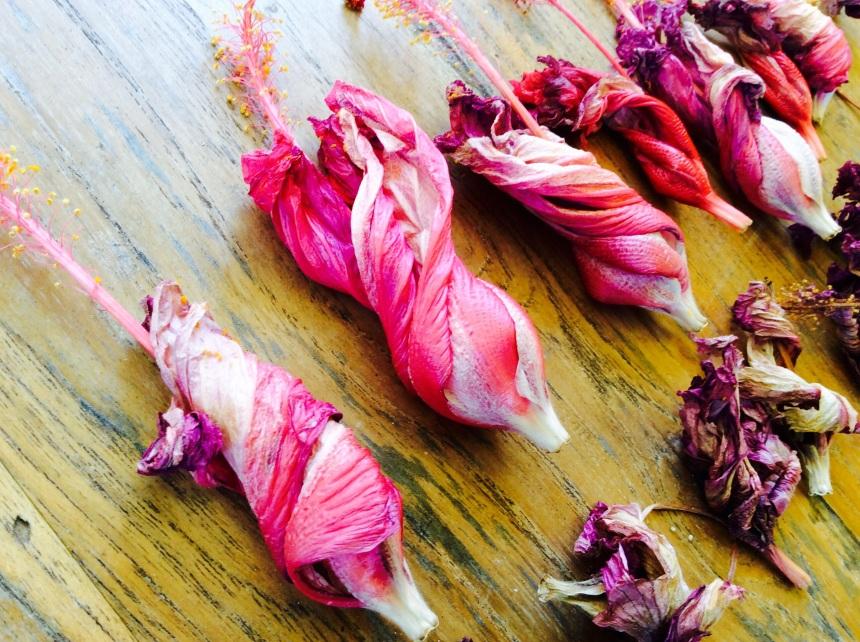 hibiscus drying