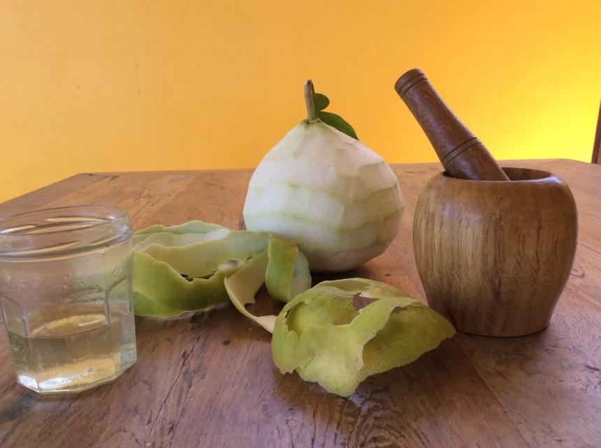 material for your DIY grapefruit oil