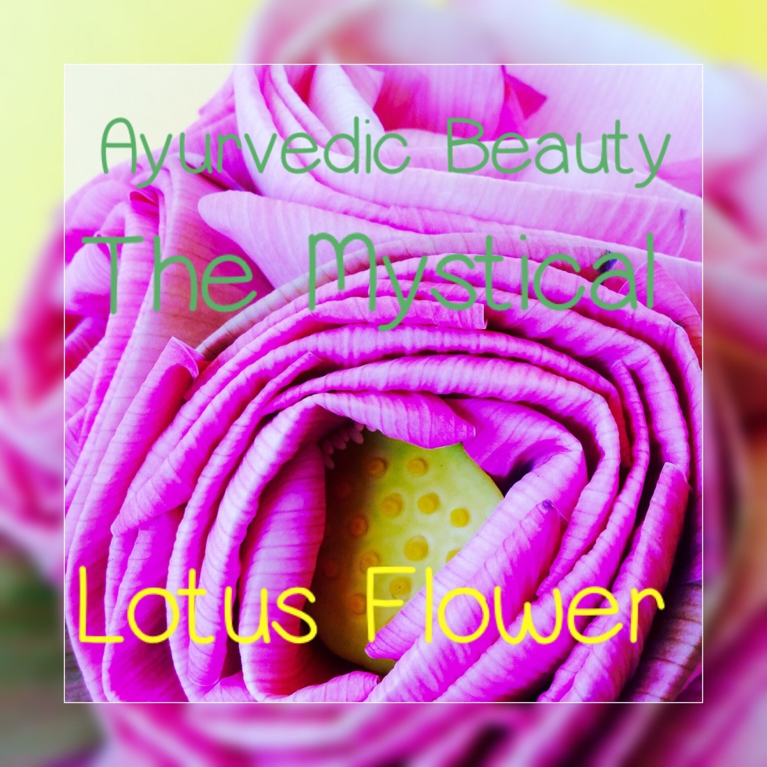 Ayurvedic Beauty The Mystical Lotus Flower Frances Natural