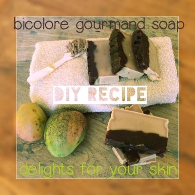 Bicolore Chocolate DIY soap recipe